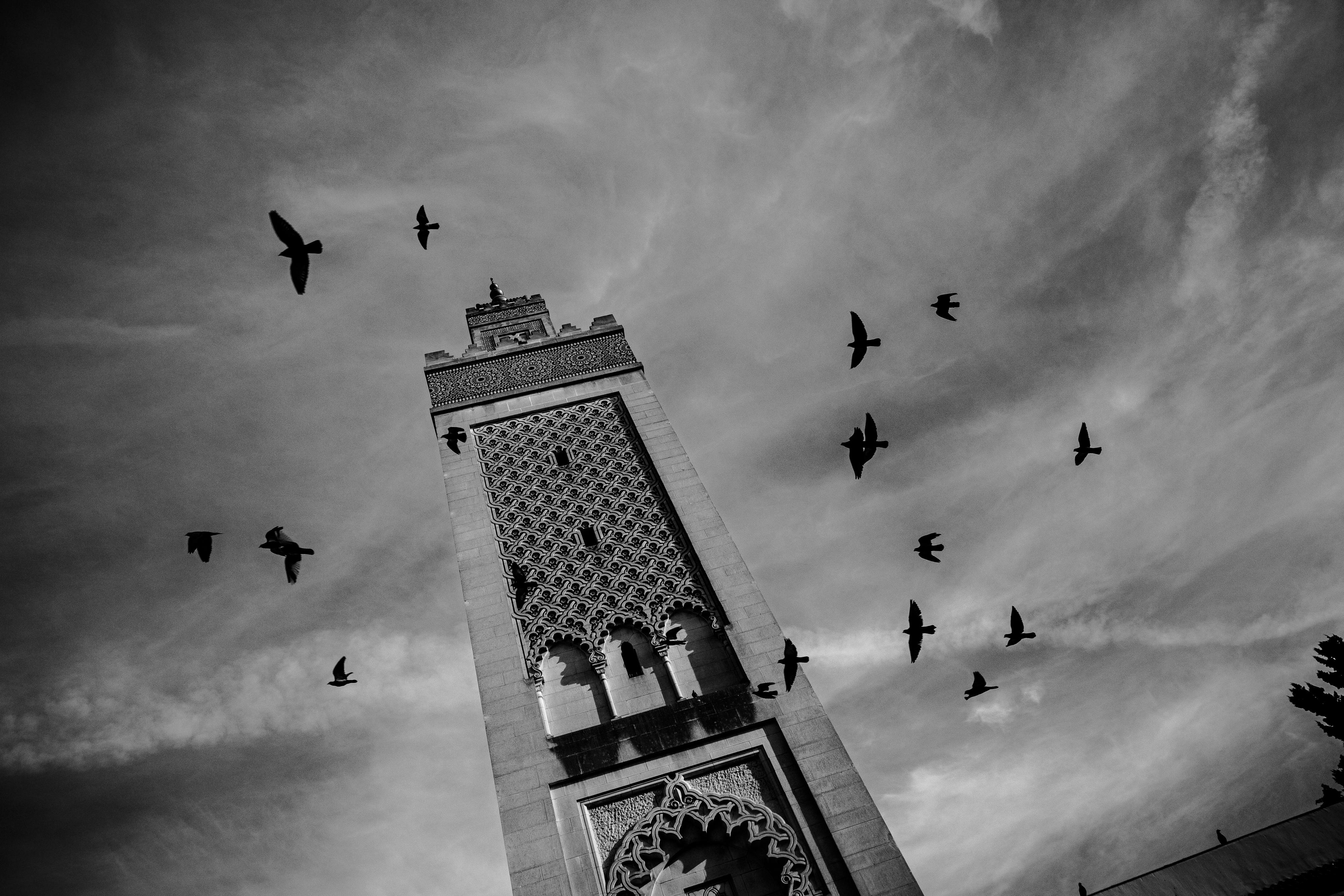 Der Halbmond, das Kreuz, der Stern, die Leere   zenith.me - Islam ...